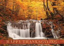 Woodland Waterfall Thanksgiving Cards